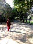 Osho Dham Walk Image