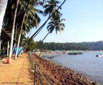 Dolphin Beach Goa Scene